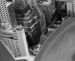 View From Above by haley727