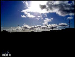 Wind Farm by kiwineen