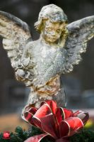 Christmas Angel by MeKamalaPhotography
