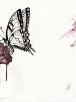 the butterfly by n0rmand0