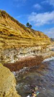 surfing sunset cliffs by Boxing-Murals