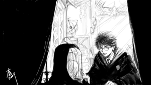 takamin  Harry Potter 4 by woshibbdou
