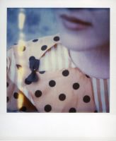 Polaroid Bow by lloydhughes