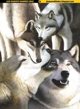 WOLF PACK by lobo-gris