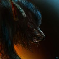 Werewolf attempt by Jakeaferr