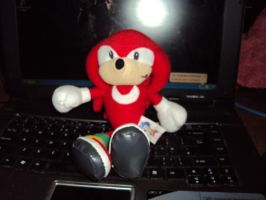Knuckles Plush 3 by DazzyDrawingN2