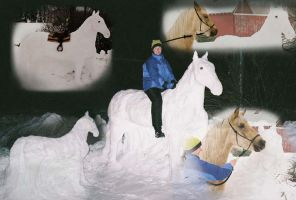 Snowhorse collage by SabrinaJenema