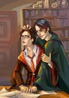 Harry Potter ~ Harry, TR(LV) by zarin-a