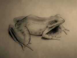 Frog Pencil by christive