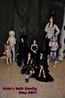 BJD Family - May 2011 by AidaOtaku-BJD