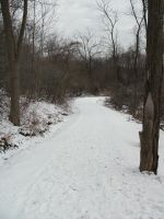 Snow Path-2 by Rubyfire14-Stock