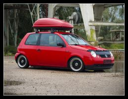 Red Lupo by Andso