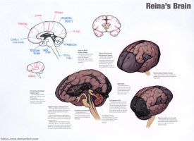 Reina's Brain by Tekka-Croe