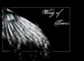 Wing of Tears by SeaFairy