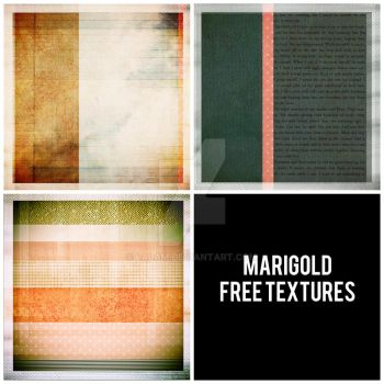 Marigold - New Free Textures. by LalaM