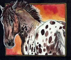 Spotted dream ACEO number 4 by jupiterjenny