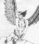 hawkgirl by flashgirl101