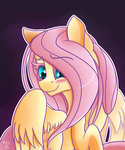 Don't Be Shy, Fluttershy by Midnight6-6-6