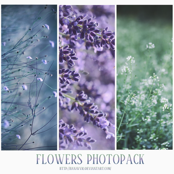 PHOTOPACK #2 FLOWERS by Hanavv10