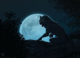 Rage of the Moon by dschunai