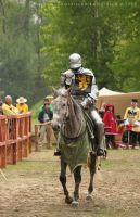 Bnfest 2012 - Knight tournament on horseback XII by RivenPine