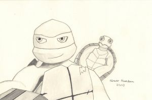 2012 Teenage Mutant Ninja Turtles: Raph and Spike by FlowerPhantom