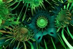 Emerald Fractalums by GrahamSym
