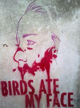 Birds Ate My Face. by funklanco