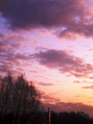 Purple Sky by angelines