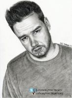 1D Liam Payne 2014 by Sharsel
