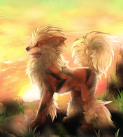 Arcanine at Sunrise. by possim