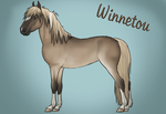 Winnetou by surpricelover