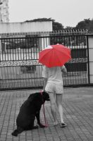 Girl With The Red Umbrella 5 by shadows-fang