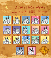 PMD-Origins: Meme - Subject Expressions by Hedgermins