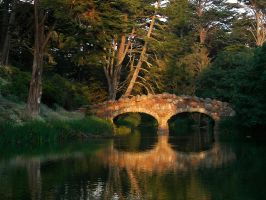 Evening in Golden Gate Park by wbmj-photo