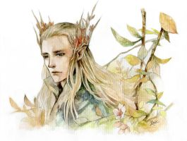 thranduil by fruitscake