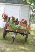 Old flowery cart by A1Z2E3R