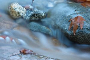 Flow by James-T-Anthony