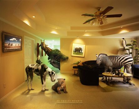 Ace Ventura Room by LordVenomTLD