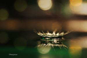 Drop Impact by Vonburgherstein