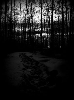 Dingy path for your thoughts by ShellShockYou