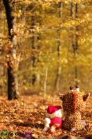 Autumn friends by Buntes-Geknipse