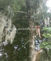 Climbing Trees 5101109 by anubis281