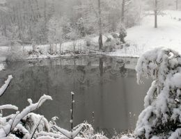 Winter Reflections by photowizard