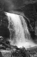 Looking Glass Falls BW by eagle79