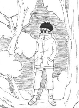 Shino of the hidden leaf by destiny101