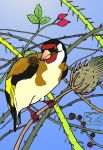Goldfinch by 7-colores
