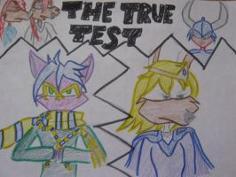 'The True Test' by CassidyCoyote