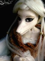 Canista 4th BJD homemade - 3 by K-a-o-r-i