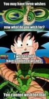 I wish for... by prime75